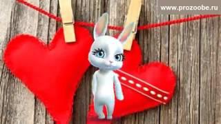 Поздравление с Днем Святого Валентина ❀❀❀ Что пожелать тебе не знаю ❀❀❀ Поздравления от Зайки