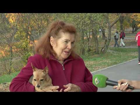 ObjectivTv: У Харкові сбили жінку с дітьми на пішохідному переході