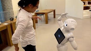 Meet Pepper, the Friendly Humanoid Robot