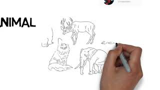 Drawing animal, how to draw animal, drawing for kids,