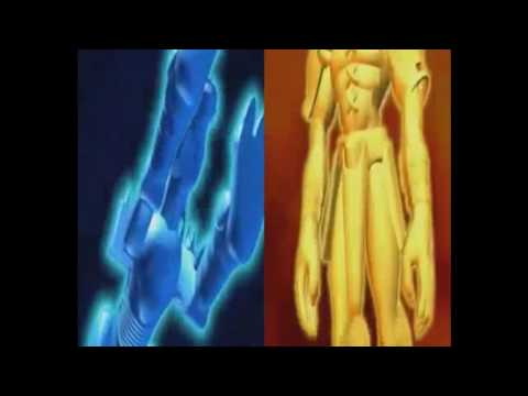 Our War Game -  WarGreymon and MetalGarurumon -  Sequence Only