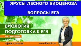 видео Биология Пономаревой И.Н. и др. для 5-9 классов