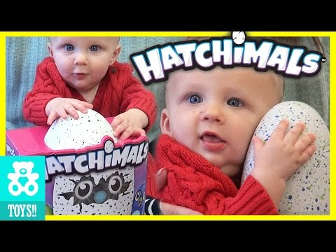 MICAH BABY'S Draggle Hatchimal Magical Surprise Egg Find Out What is Inside!  |  KITTIESMAMA