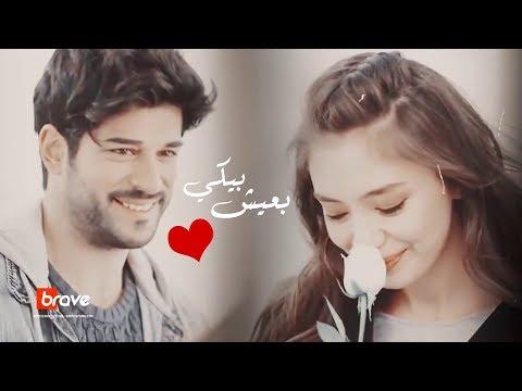 -   || b3eish beeki -  Ayman Amer  (       )
