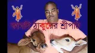 Kanai Thakurer sripath(কানাই ঠাকুরের শ্রীপাঠ)-----------Kaliya Gopal Prabhu
