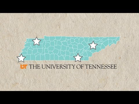 The University of Tennessee leads the nation in holding down tuition costs
