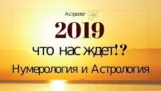 2019 год. Что нас Ждёт!?  Общий гороскоп от Olga
