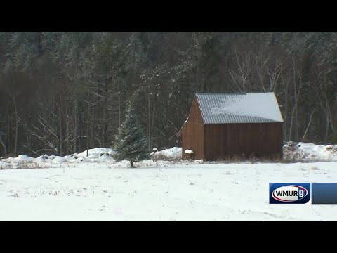 NH Towns Get Several Inches Of Snow