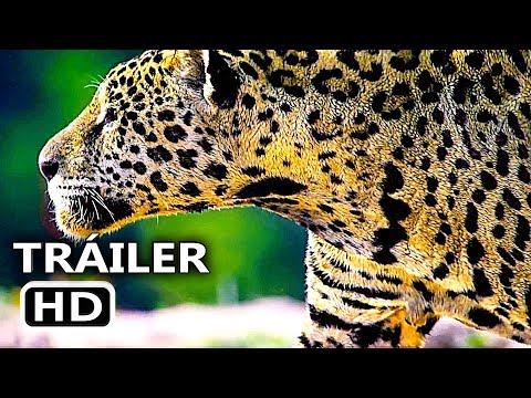 Play NUESTRO PLANETA Teaser Español (2019) Documental, Serie Netflix
