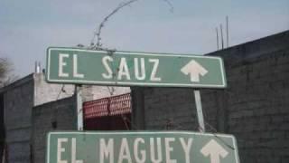 EL SAUZ GUANAJUATO