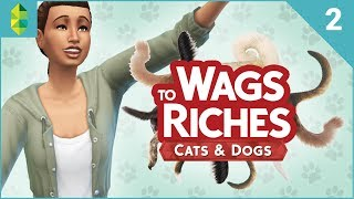 wags to riches part 2 sims 4 cats dogs