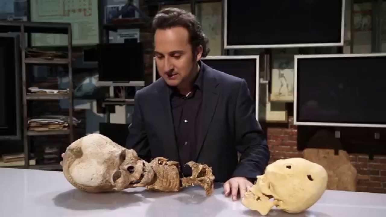 ¿Cráneos extraterrestres?