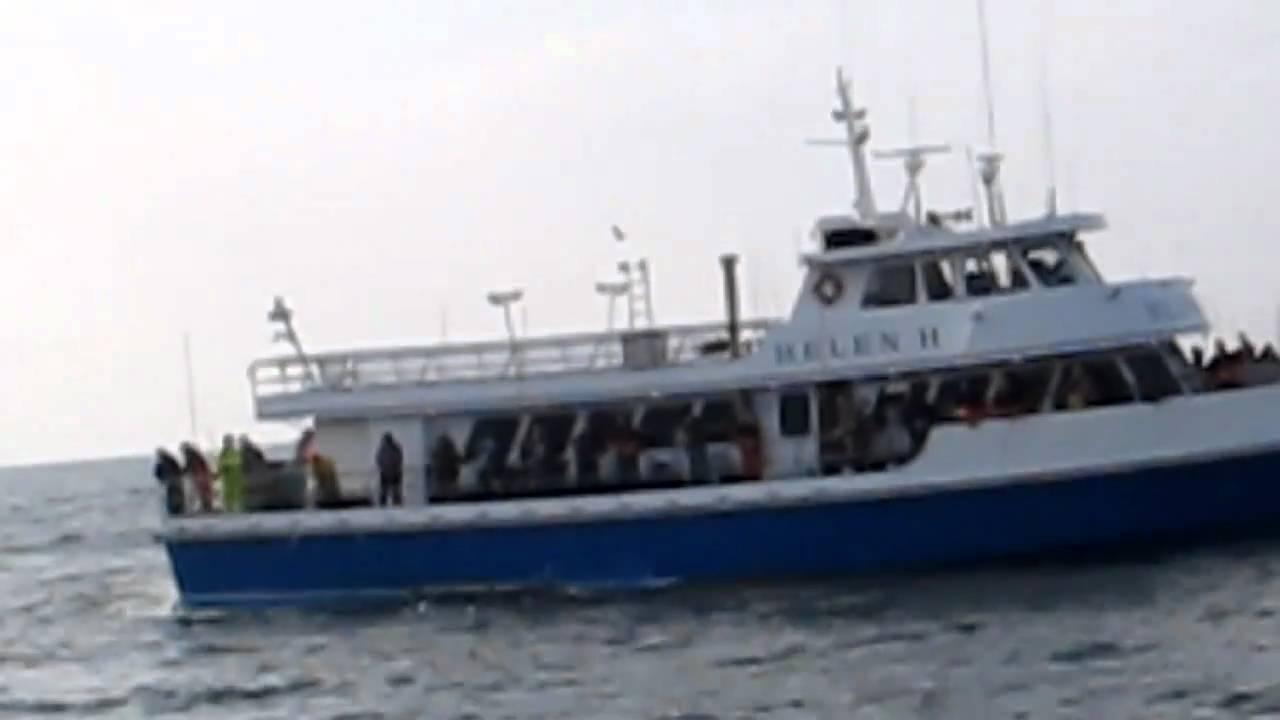 Captree princess block island fishing with captain rob for Captree fishing report