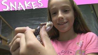 Girl Giggles When Snakes Bite Her - SnakeHuntersTV