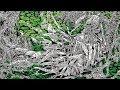 WORM - Gloomlord (2020) Iron Bonehead Productions - full album