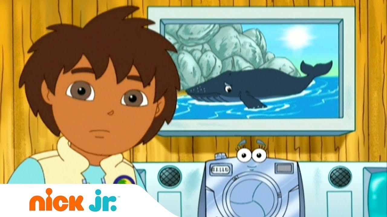 Гоу, Диего, Гоу! Китёнок Nickelodeon Смотреть Онлайн Никелодеон Программа