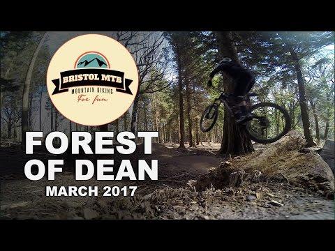 Forest of Dean Mountain biking, Verderers + new stuff