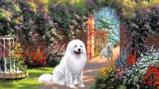 Домашние животные для САМЫХ МАЛЕНЬКИХ.  Развивающий мультик для детей.Pets for kids.