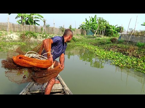 Village Fishing।fish Hunting By Cast Net।net Fishing In The River Part-526