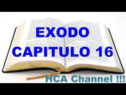 EXODO CAPITULO 16 / Dios da el maná