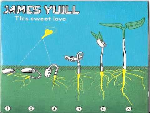 James Yuill ‎-- This Sweet Love   --(Prins Thomas Sneaky Edit)