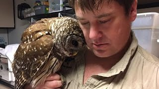 Rescued Owl Sends Everyone Into Tears After Seeing Her Rescuer