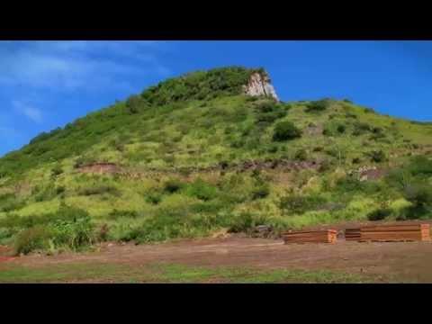 Prime Hotel & Condominiums Development in St. Kitts