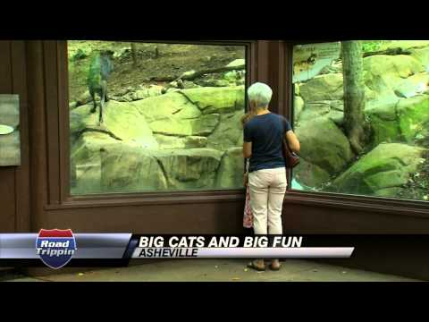 Asheville- WNC Nature Center