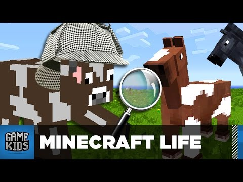 DETECTIVE SLINKY, ON THE CASE - The Minecraft Life - Bro Gaming
