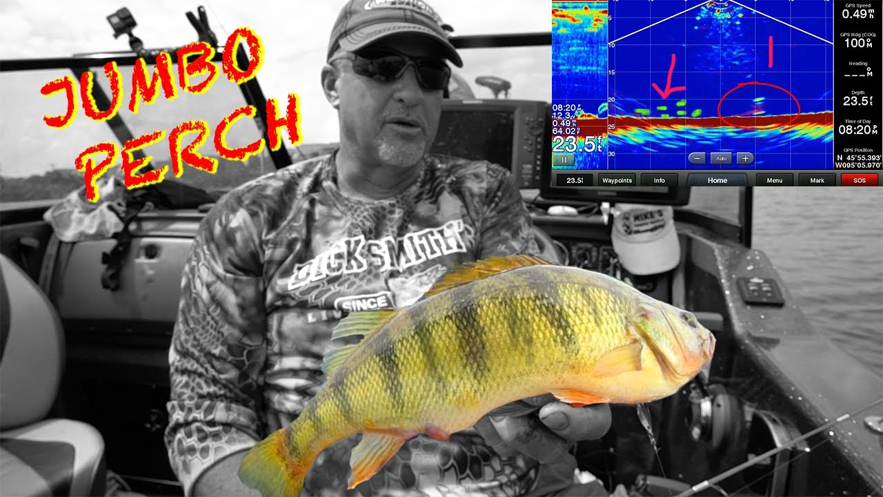 Larry Smith Outdoors » TV Show » Episodes/Videos