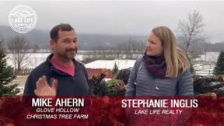 Business Spotlight: Glove Hollow Tree Farm