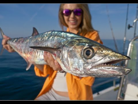 Fishing Nearshore Wrecks For KING MACKEREL (Kingfish) Ft. How To