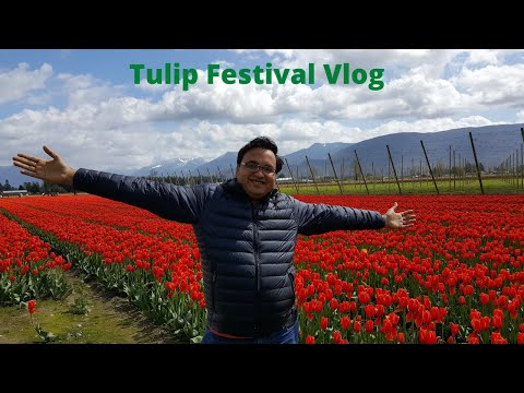Weekend fun at Abbotsford Tulip Festival and Vancouver Sun Run 2018