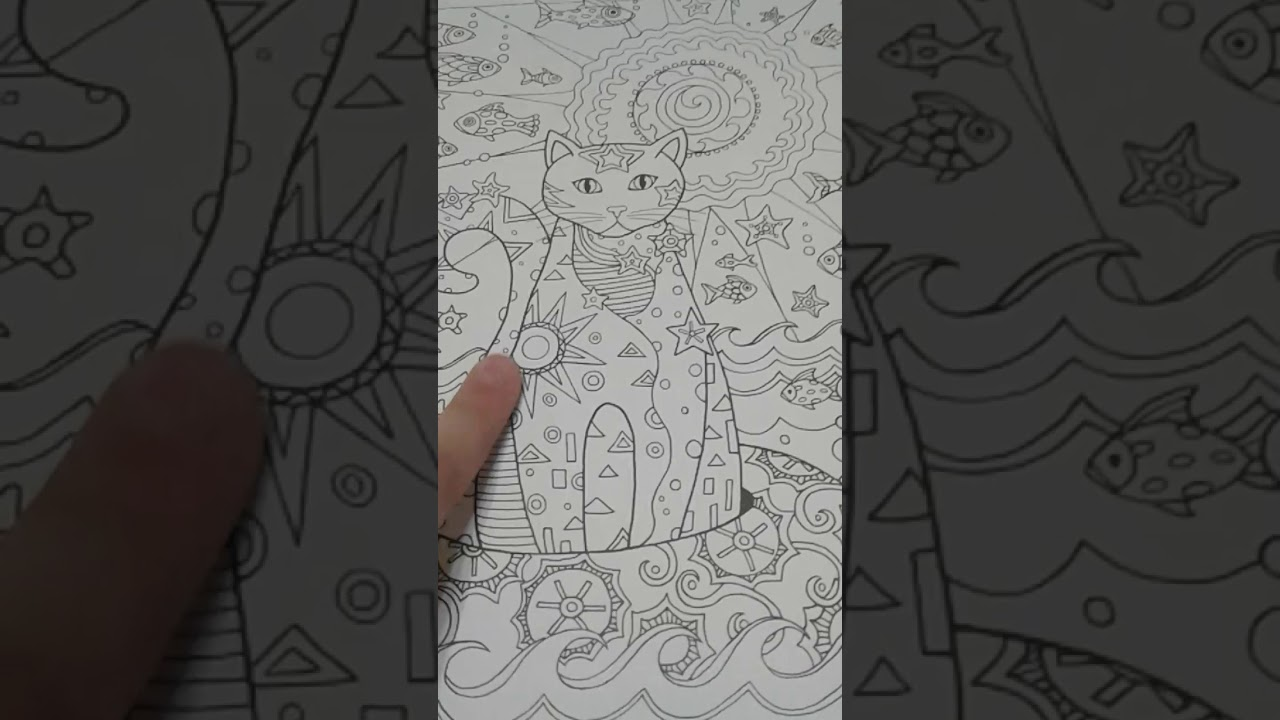 Обзор на раскраску Котики творческий рай 😍😍 - YouTube