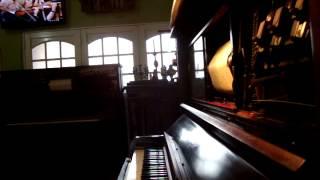 La Golondrina, Marimba Waltz en pianola por Horacio Asborno desde Viedma, Argentina