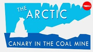 Why The Arctic Is Climate Change's Canary In The Coal Mine - William Chapman