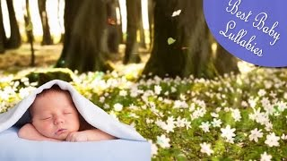 Songs To Put A Baby To Sleep Lullabies Lyrics for Babies To Go To Sleep 2 HRS Music ♥