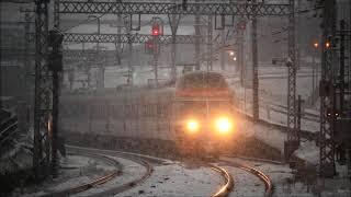 小田急電鉄 関東地方大雪の中のロマンスカー VSE(10000形)&LSE(7000形)