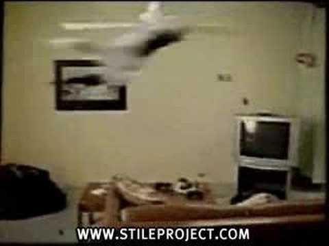 Cat Jumps On Ceiling Fan