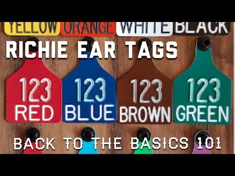 Richie, Livestock Ear Tag ID.