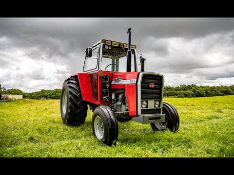 Restored classic Massey Ferguson 565 in Co. Carlow (Ireland)
