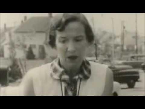 Levittown - US History Scene