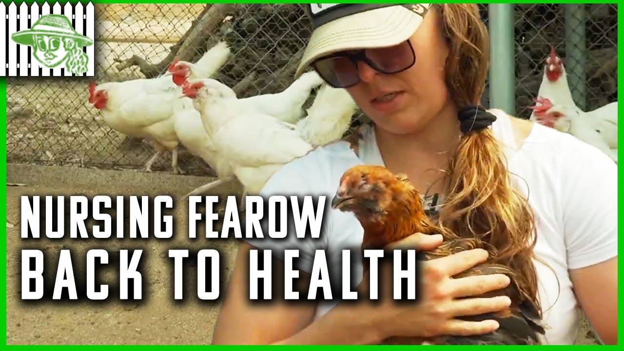 Ronda Rousey Nurses a Chicken Back to Health | Browsey Acres