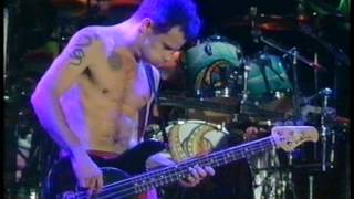 Red Hot Chili Peppers - Warped [Live, Reading Festival - England, 1994]