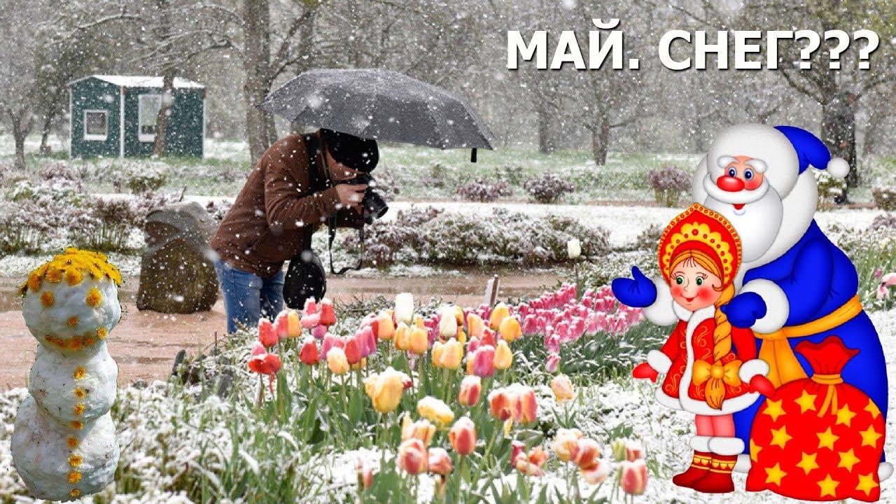 с майским снегом картинки гиф привода червячным