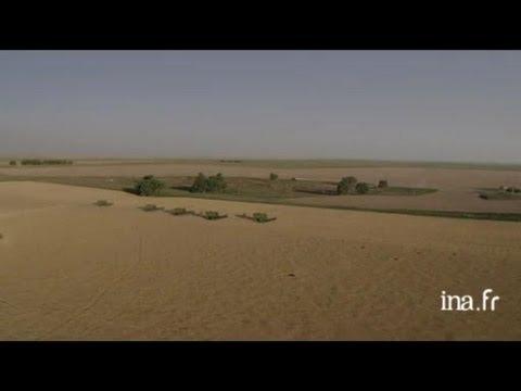 Etats Unis, Kansas : ramassage et stockage de la récolte du blé
