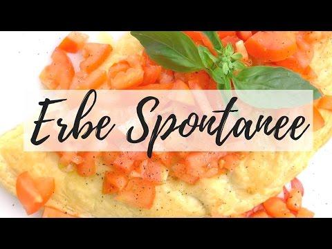 3 Erbe Spontanee Commestibili #2 Trifoglio⎮Malva⎮Pimpinella⎮Ricette Vegetariane