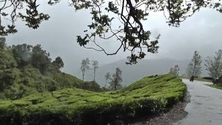 AWESOME NATURE IDUKKI  IN GOD OWN COUNTRY  FHD