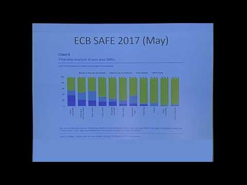 International Risk Management Conference 2017 - Federico Galizia