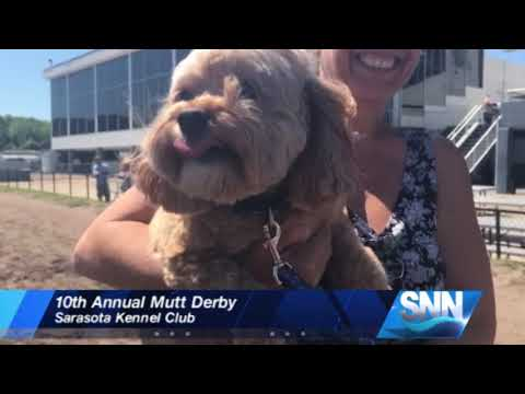 SNN: Mutt Derby raises money for All Faiths Food Bank and retired greyhounds